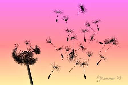 I wish..I wish....I wish......