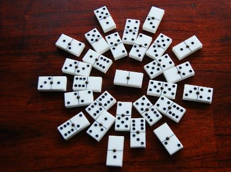 Dominos Flower
