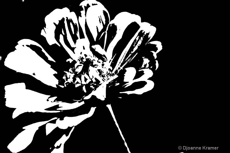 Just Black & White