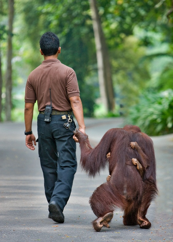 The road to friendship ............