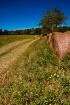Hay Bale Lane