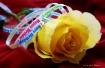 Happy Birthday fe...