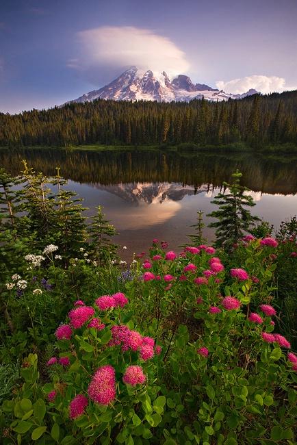 Reflection Lakes, Mt. Rainier National Park