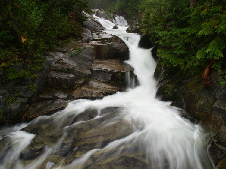Paradise River