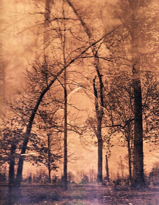 Salem (as Auratone) - ID: 6867437 © Steve Parrott