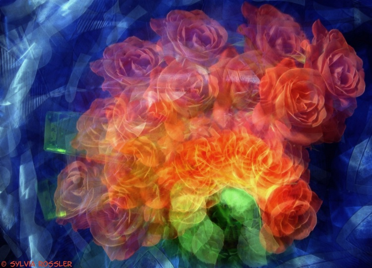 swirling roses