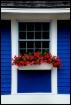 Window Dressing.....