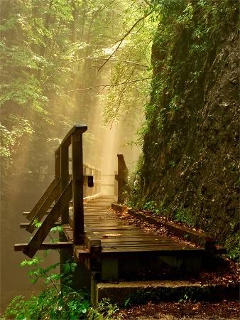 path of a dreamer 2