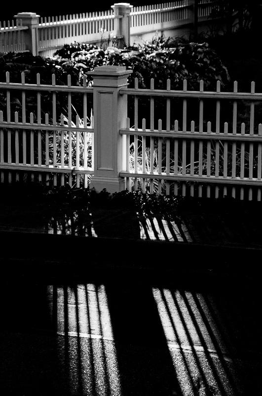 Cross The Street - ID: 6903899 © Stanley Singer