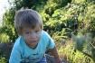 Climbing kid