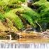 © Krystian Madejski PhotoID # 6911493: Waterfall with the ferns