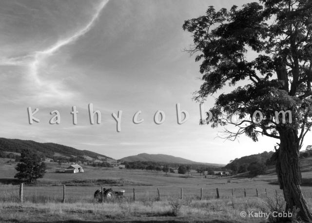 Summer Tractor B/W - ID: 6930304 © Kathy Cobb