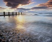 Beach Chatter Fin...