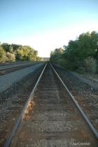 focus on the tracks