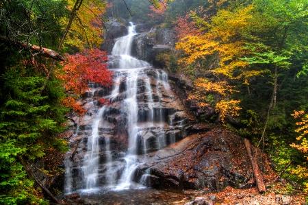 Cloudland Falls II
