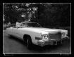 Dream Car  I ~  U...