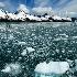 © Dawn Schwack PhotoID# 7096698: Ice View-185