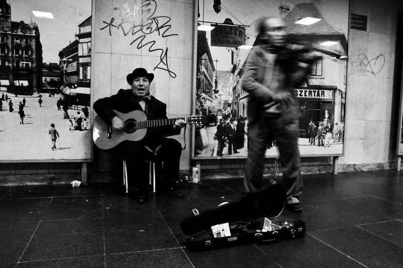 String Serenade - ID: 7108303 © Stanley Singer