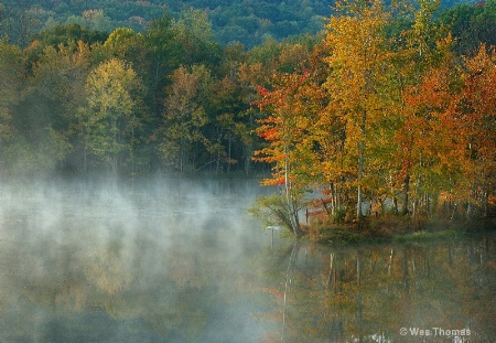 A Misty Autumn Morning.