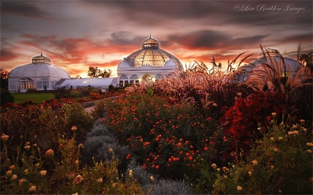 Botanical Garden Sunset