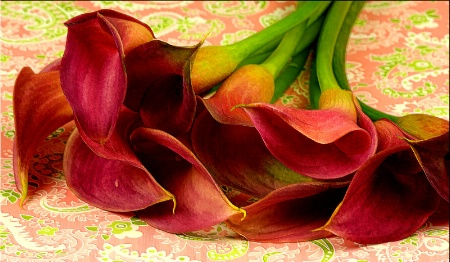 Paisley Lilies