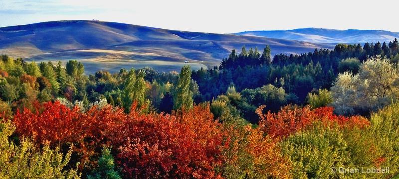 University of Idaho Arboretum & Palouse Hills