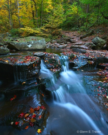 Colors of the Glen