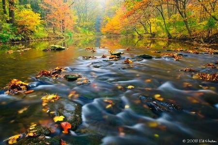 Fall 2008 on the Octoraro Creek