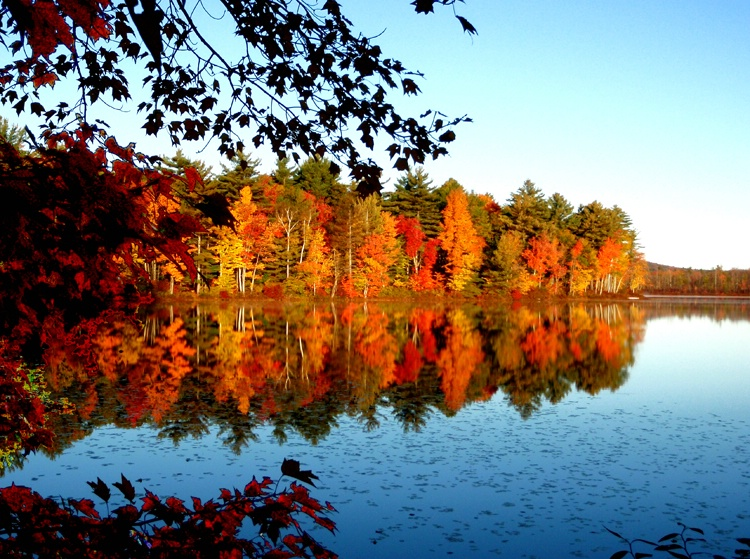 Gile Pond, Sutton, New Hampshire - ID: 7218602 © Daryl R. Lucarelli