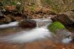 Moss Rock Falls