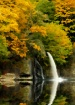 Lewis River Fall ...