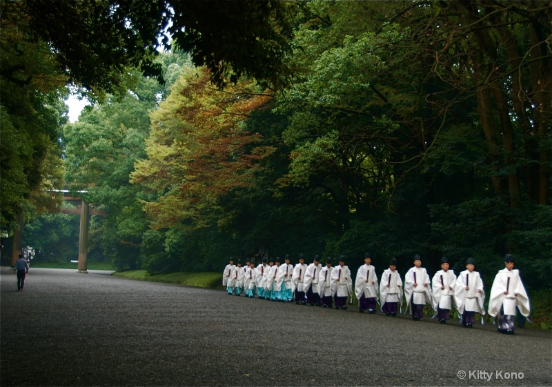 Priests at Meiji Shrine - ID: 7291842 © Kitty R. Kono