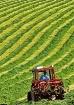 Make Hay Etc...