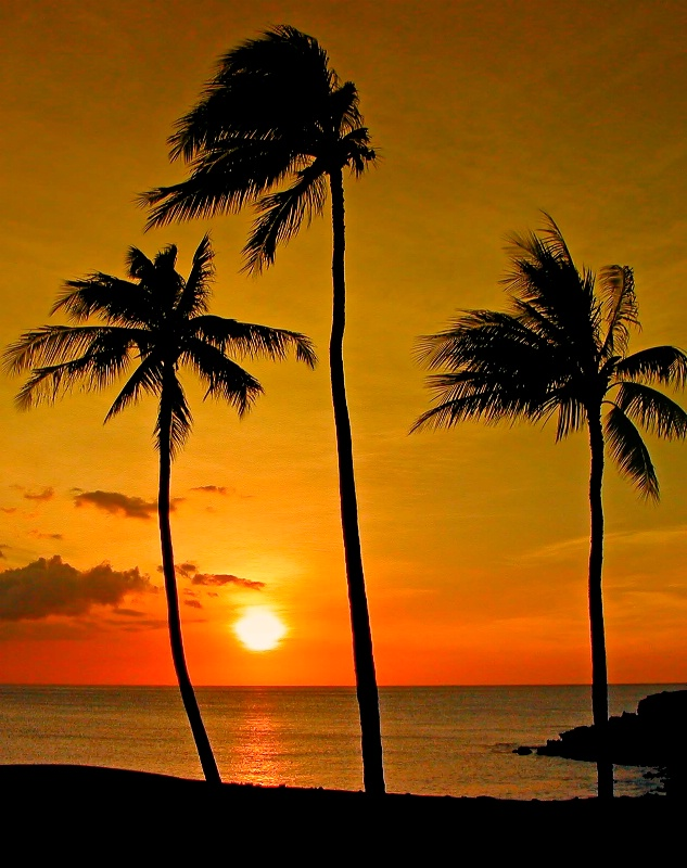 Autumn Sunset Hawaii