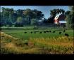 Dawn at the farm,...