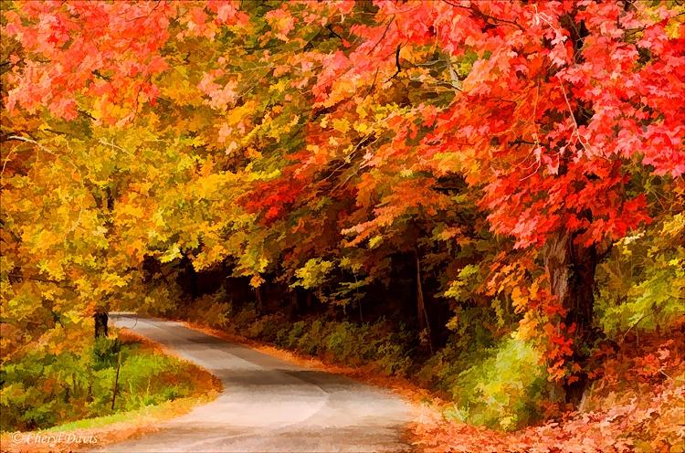 A U T U M N   Road