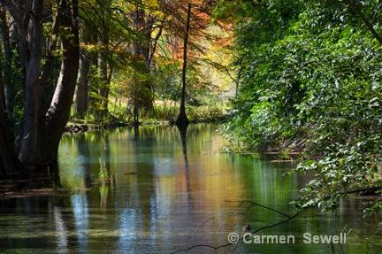Frio River, TX - ID: 7397382 © Carmen B. Sewell