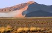 Distant Dune in F...