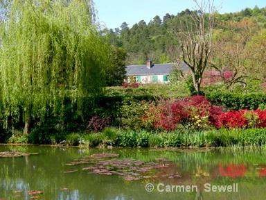 Monet's Garden, Giverney - ID: 7426889 © Carmen B. Sewell