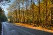 Road through moun...