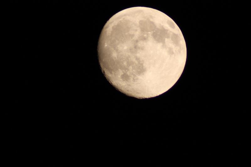 bella luna - ID: 7490896 © M.  Martha M. Eid