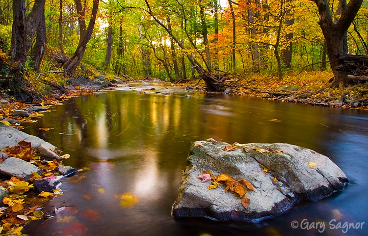 Fall, Brandywine Creek