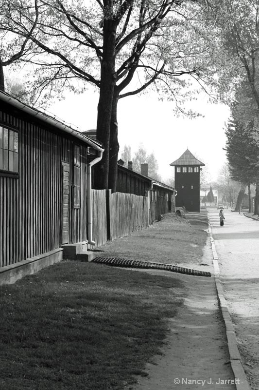 The Grounds of Auschwitz