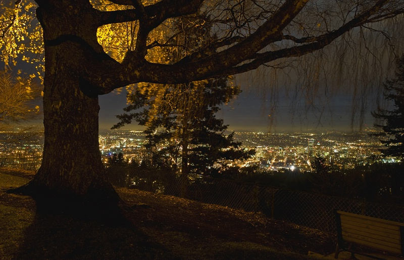 night view at pittock