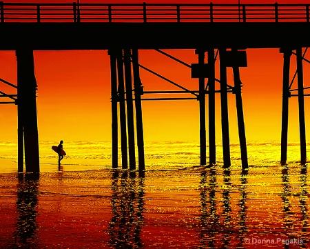 Endless Summer of Surf