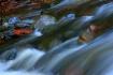Cadunce River,MN