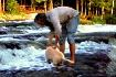 Puppy Lesson: W-a...