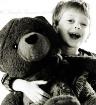 The Bear's Bi...