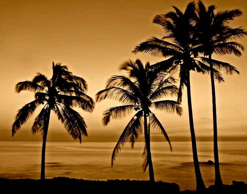 """""""Vintage Hawaii"""""""