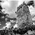 © Glenn Affleck PhotoID # 7633734: Ballyhannon Castle, Quin Ireland